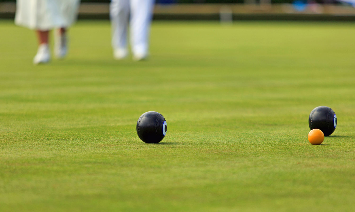 Professional Bowling Green Specialists